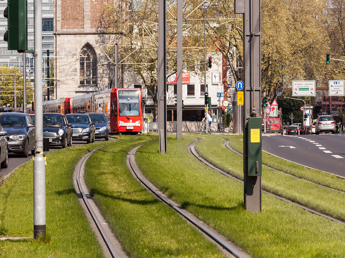 Integration von Rasengleis in Gleisanlagen führt zu Lärmschutz an der Quelle. Hierauf kann die Planung von Schienenwegen Rücksicht nehmen.