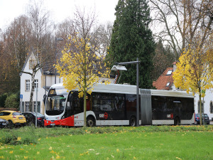 E-Bus in Zollstock
